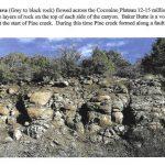 Barry Jones Gila County Geology - Basaltic Lava file 11