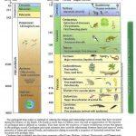 Barry Jones Gila County Geology - Geological Timeline