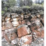 Barry Jones Gila County Geology - Martin Formation file 6