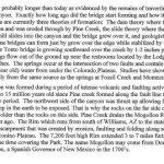 Barry Jones Gila County Geology - The Bridge and Pine Canyon file 14